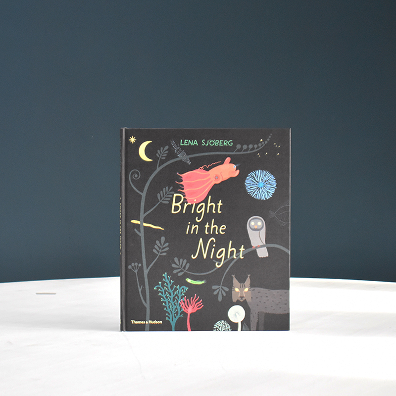 Bright in the Night book